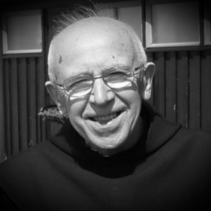 o. Wilfrid Stinissen 1927 - 2013