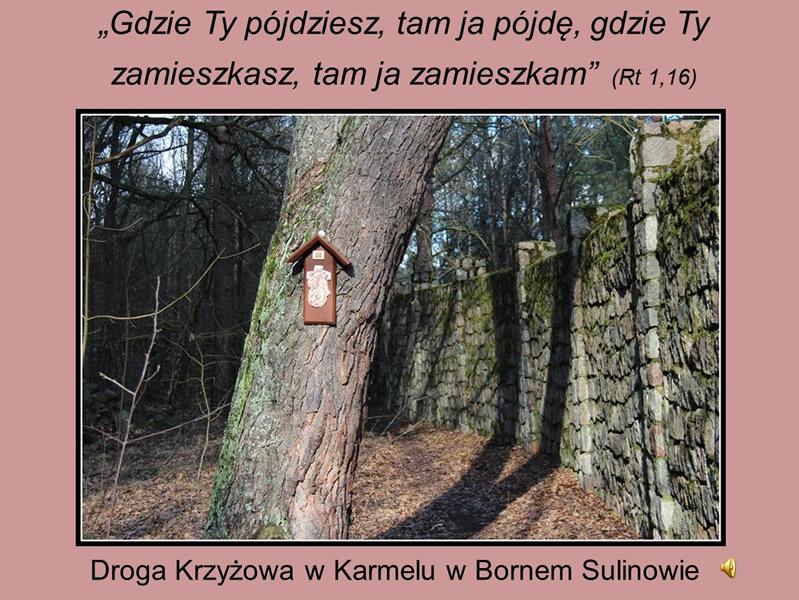 droga-krzyzowa-karmel-borne-2017 (1)