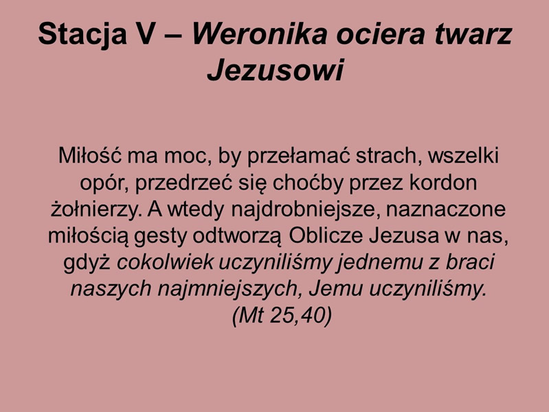 droga-krzyzowa-karmel-borne-2017 (12)