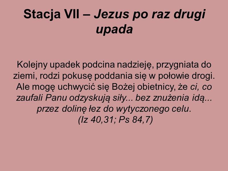 droga-krzyzowa-karmel-borne-2017 (16)